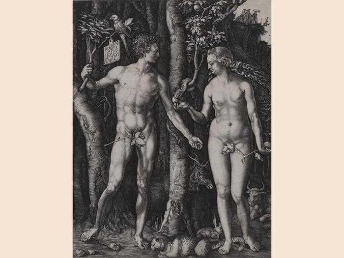 Albrecht Dürer, Adam and Eve (Image: www.lacma.org)