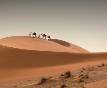 Le Migliori Idee Di Viaggio Per Una Vacanza In Emirati
