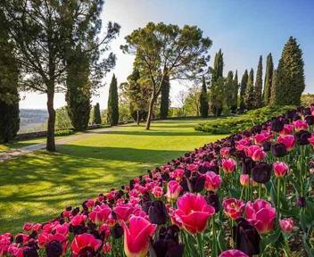 Primavera tra i parchi italiani in fiore - Il Sole 24 ORE