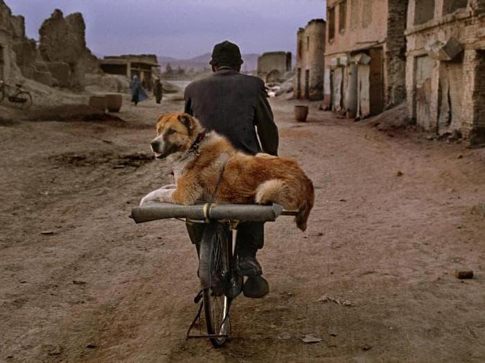 Kabul, Afghanistan, 2002. © Steve McCurry